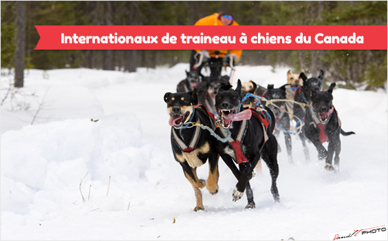 internationaux